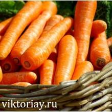 "Морковь сорт: ""ФЛАККЕ"""