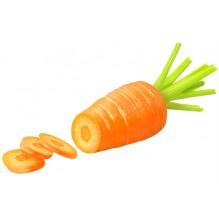 """Морковь сорт: """"Красный Великан"""""""