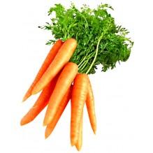 """Морковь сорт: """"Вкусняшка"""""""
