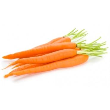 """Морковь сорт: """"Лосиноостровская"""""""