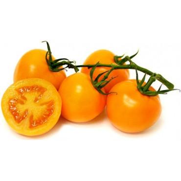 """Томат сорт """"Апельсин"""""""