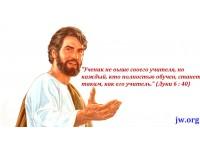 Мультфильм «Выкуп!» Урок 26
