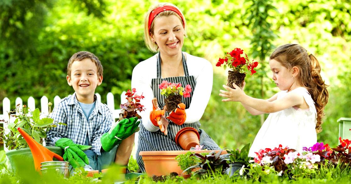 сад,огород,детский сад,дети в саду,грибы,купить грибы,сушенные грибы,консервированые грибы,салат с грибами,рецепты с грибами,грибы фото,заказывайте гриба,купить онлайн белые грибы,курица с грибами,грибы в духовке,цветы,купить цветы,семена цветов,семена,семя,семю,купить семена,купить семян,семена почтой,арбуз,семена магазин,интернет семена,интернет семян,интернет магазин семян,куплю семена,каталог семена,каталог семян,капуста,учеба,среднее образование,внешкольная работа,виктория,клуб виктория,детско - юношеский центр,перец,сладкий перец,болгарский перец,морковь,семена моркови,полезные свойства моркови,новости,полезные новости,последние новости,новости на сегодня,новости онлайн