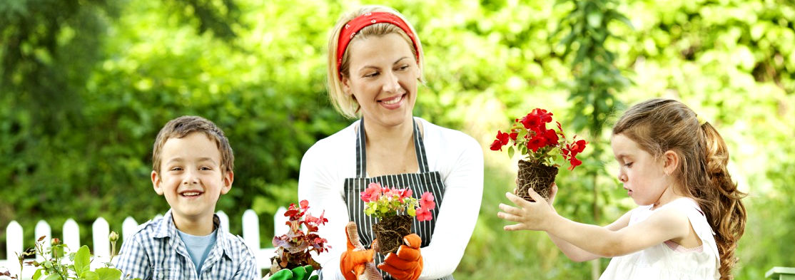 сад,огород,детский сад,дети в саду,грибы,купить грибы,сушенные грибы,консервированные грибы,салат с грибами,рецепты с грибами,грибы фото,заказывайте гриба,купить онлайн белые грибы,курица с грибами,грибы в духовке,цветы,купить цветы,семена цветов,семена,семя,семю,купить семена,купить семян,семена почтой,арбуз,семена магазин,интернет семена,интернет семян,интернет магазин семян,куплю семена,каталог семена,каталог семян,капуста,учеба,среднее образование,внешкольная работа,виктория,клуб виктория,детско - юношеский центр,перец,сладкий перец,болгарский перец,морковь,семена моркови,полезные свойства моркови,новости,полезные новости,последние новости,новости на сегодня,новости онлайн