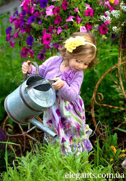 сеялка (дозатор) для точного посева семян,выращивание растений и цветов,выращивание растений и цветов на продажу,выращивание цветов на продажу,цветы,купить цветы,семена цветов,семена,семя,семю,купить семена,купить семян,семена почтой,арбуз,семена магазин,интернет семена,интернет семян,интернет магазин семян,куплю семена,каталог семена,каталог семян,капуста,перец,сладкий перец,болгарский перец,морковь,семена моркови,полезные свойства моркови,грибы,купить грибы,сушенные грибы,консервированые грибы