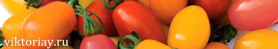 томат,томаты,семена томата,купить оптом семена томата,купить семена томата,помидор,помидоры,купить помидоры,семена помидор,купить семена помидор,купить семена помидор оптом,семена,семя,семю,купить семена,купить семян,семена почтой,арбуз,семена магазин,интернет семена,интернет семян,интернет магазин семян,куплю семена,каталог семена,каталог семян,капуста,учеба,среднее образование,внешкольная работа,виктория,клуб виктория,детско - юношеский центр