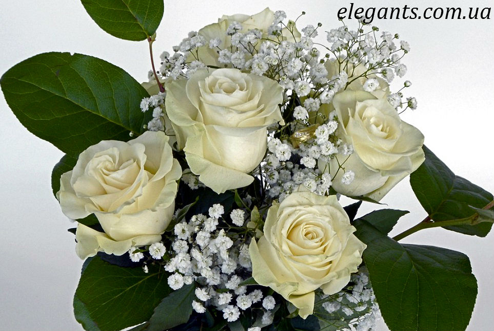 свадебный букет купить,свадебный букет,свадебный букет: история, мода, выбор,как выбрать цветы в подарок,цветы,цветы купить,сад,огород,подарки,подарки купить,декупаж,рукоделие,сувениры,коллекция,заказать подарки,купить подарки,семья,годы,купить сувениры,ювелирный магазин,бижутерия,магазин бижутерии,бижутерия интернет,бижутерия интернет магазин,купить бижутерию,бижутерия оптом,сайт бижутерии,ювелирная бижутерия,ювелирный украшение,купить украшение,украшение интернет магазин,украшение магазин,золото,семена цветов,семена,семя,семю,купить семена,купить семян,семена почтой,арбуз,семена магазин,интернет семена,интернет семян,интернет магазин семян,куплю семена,каталог семена,каталог семян,капуста,учеба,среднее образование,внешкольная работа,виктория,клуб виктория,детско - юношеский центр,перец,сладкий перец,болгарский перец,морковь,семена моркови,полезные свойства моркови,новости,полезные новости,последние новости,новости на сегодня,новости онлайн